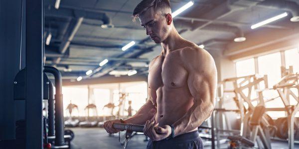 muscular bodybuilder man in the gym